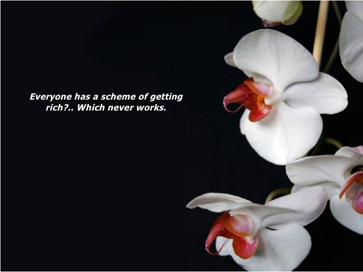 Everyone has a scheme of getting rich?.. Which never works.