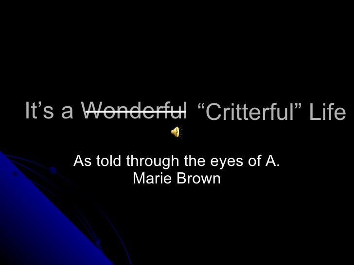 "It's a Wonderful As told through the eyes of A. Marie Brown "" Critterful"" Life"