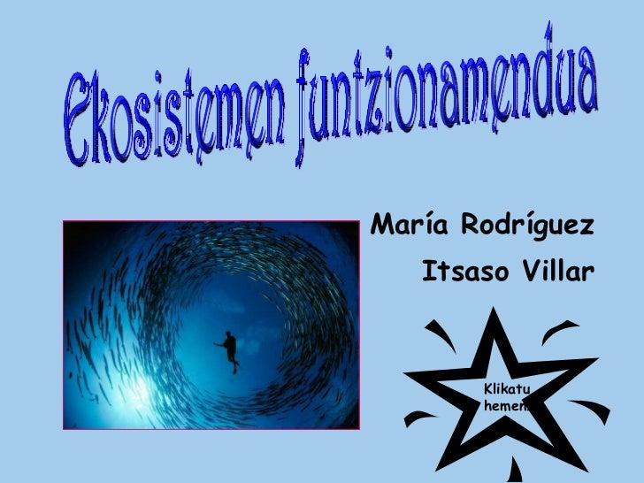 <ul><li>María Rodríguez </li></ul><ul><li>Itsaso Villar </li></ul>Ekosistemen funtzionamendua Klikatu hemen!
