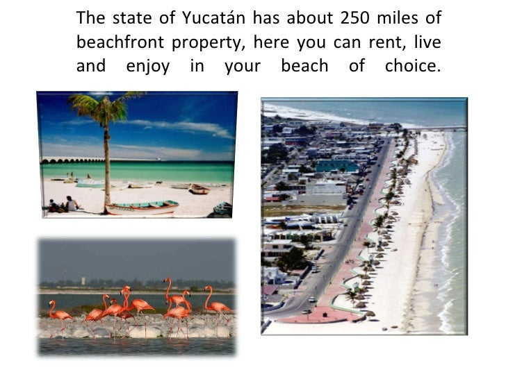 The state of Yucatán has about 250 miles of beachfront property, here you can rent, live and enjoy in your beach of choice.