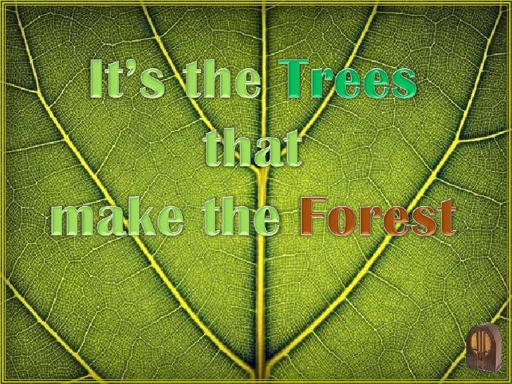 It's the Trees that <br />make the Forest<br />