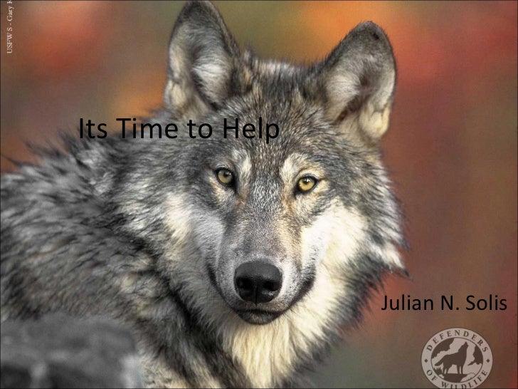Its Time to Help Julian N. Solis