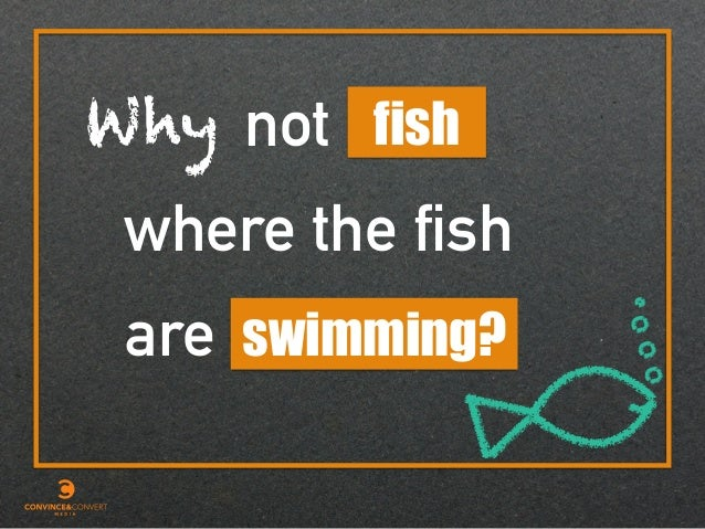 Why are fish where the fish swimming? not