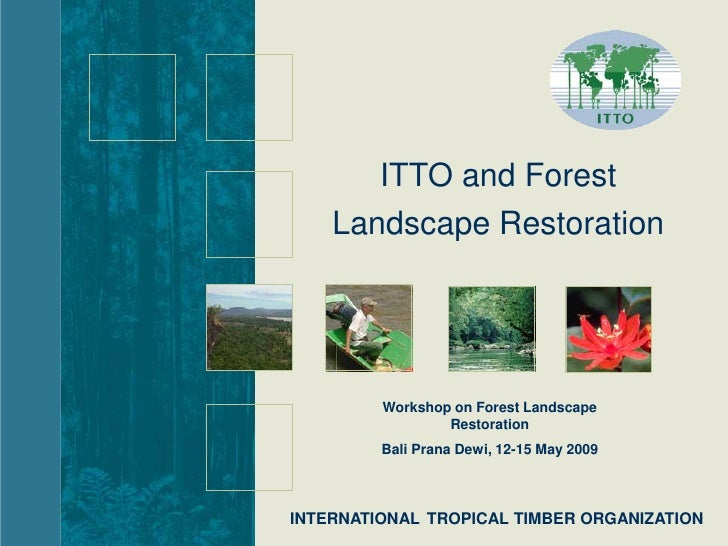 ITTO and Forest     Landscape Restoration              Workshop on Forest Landscape                  Restoration          ...