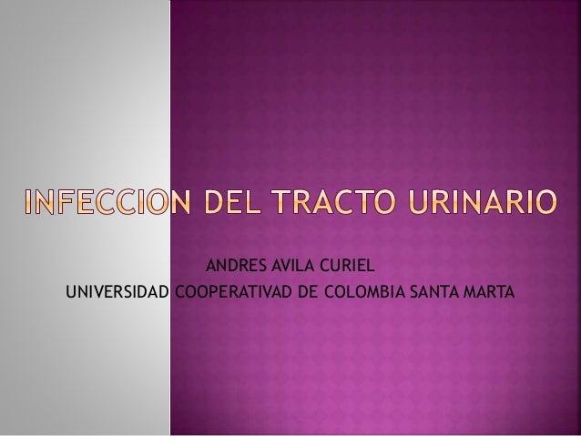 ANDRES AVILA CURIEL UNIVERSIDAD COOPERATIVAD DE COLOMBIA SANTA MARTA