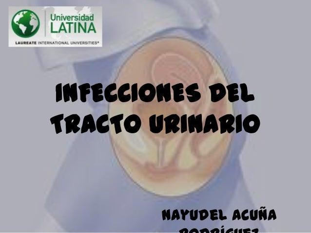 INFECCIONES DELTRACTO URINARIONayudel Acuña