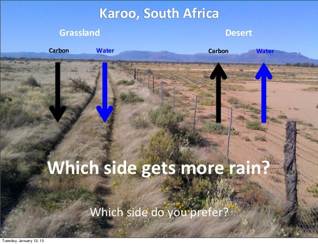 Karoo,  South  Africa Grassland WaterCarbon Desert WaterCarbon Which  side  do  you  prefer? Which  side  ...