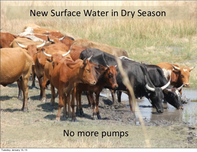 New  Surface  Water  in  Dry  Season No  more  pumps Tuesday, January 13, 15