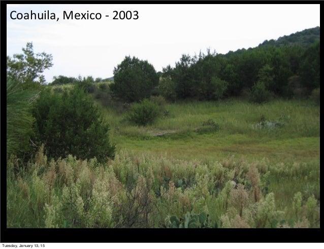 Coahuila,  Mexico  -‐  2003 Tuesday, January 13, 15