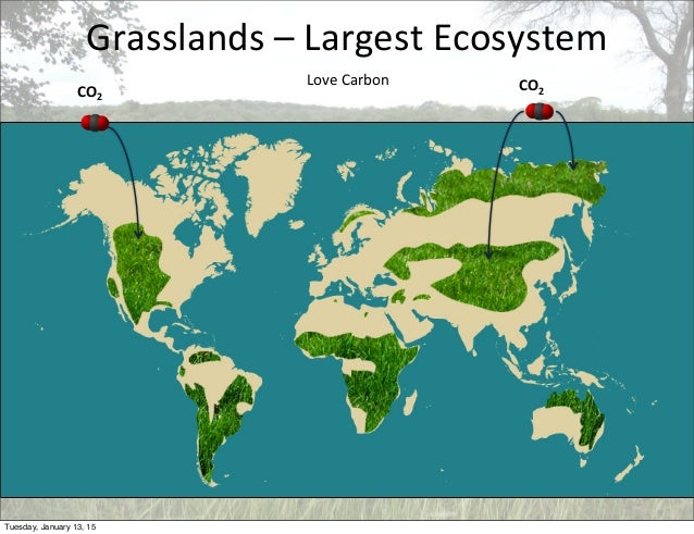 Grasslands  –  Largest  Ecosystem Love  Carbon CO2CO2 Tuesday, January 13, 15