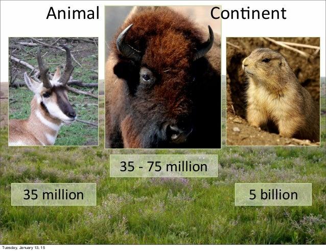 35  -‐  75  million 35  million 5  billion Animal Con;nent Tuesday, January 13, 15