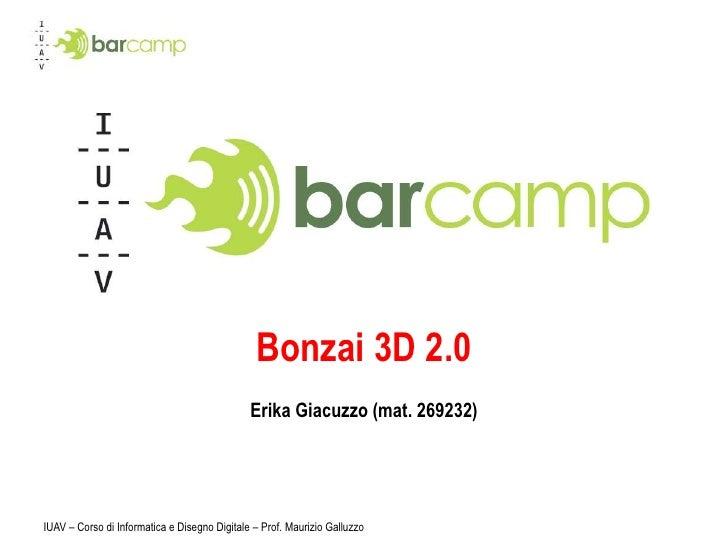 IUAV – Corso di Informatica e Disegno Digitale – Prof. Maurizio Galluzzo<br />Bonzai 3D 2.0<br />Erika Giacuzzo (mat. 2692...