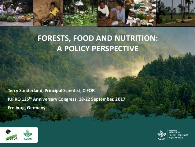 Terry Sunderland, Principal Scientist, CIFOR IUFRO 125th Anniversary Congress, 18-22 September, 2017 Freiburg, Germany FOR...