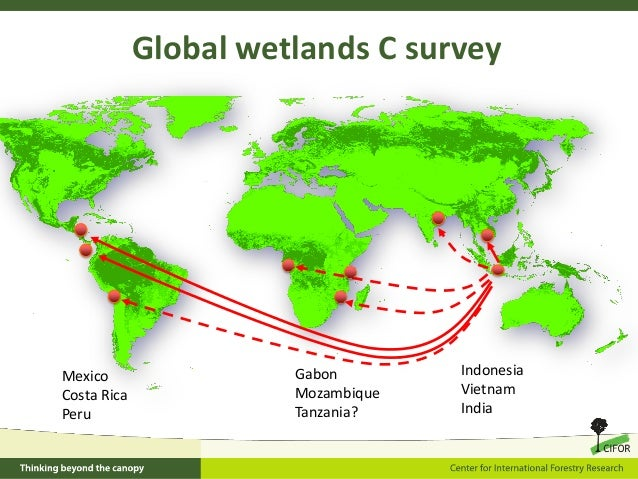 Why should tropical wetlands be part of climate change mitigation str…