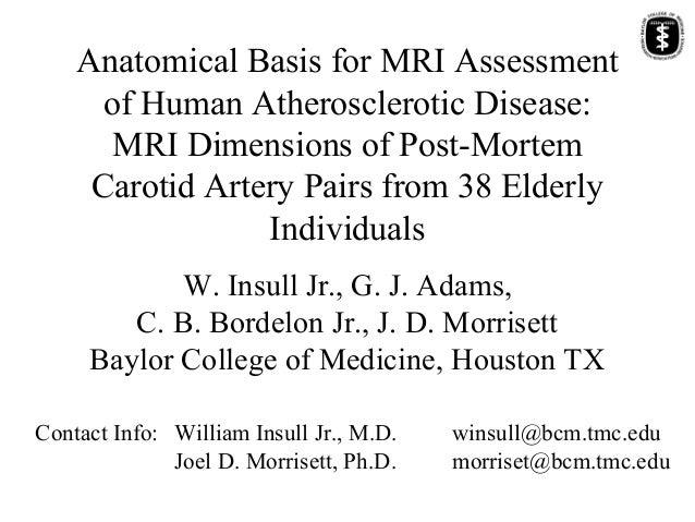 Anatomical Basis for MRI Assessment of Human Atherosclerotic Disease: MRI Dimensions of Post-Mortem Carotid Artery Pairs f...