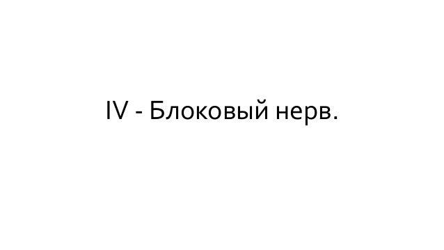 IV - Блоковый нерв.
