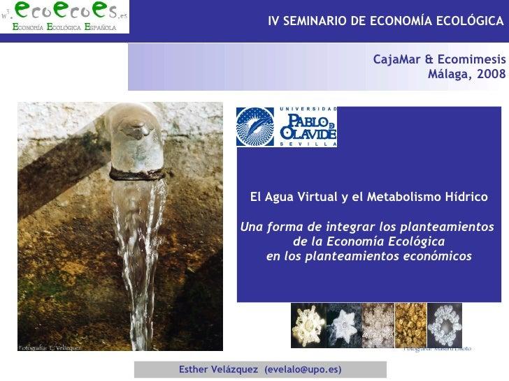 Esther Velázquez  (evelalo@upo.es) El Agua Virtual y el Metabolismo Hídrico Una forma de integrar los planteamientos  de l...
