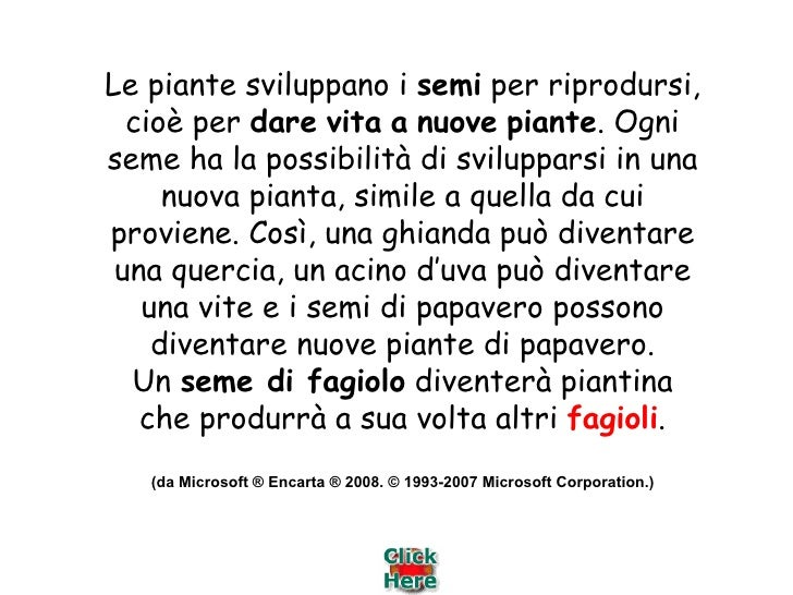 I Vegetali: dal Seme... la Vita Slide 2