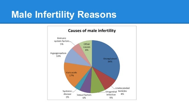 essay on male infertility Male infertility essays and term papers available at echeatcom, the largest free essay community.