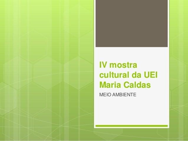 IV mostra cultural da UEI Maria Caldas MEIO AMBIENTE