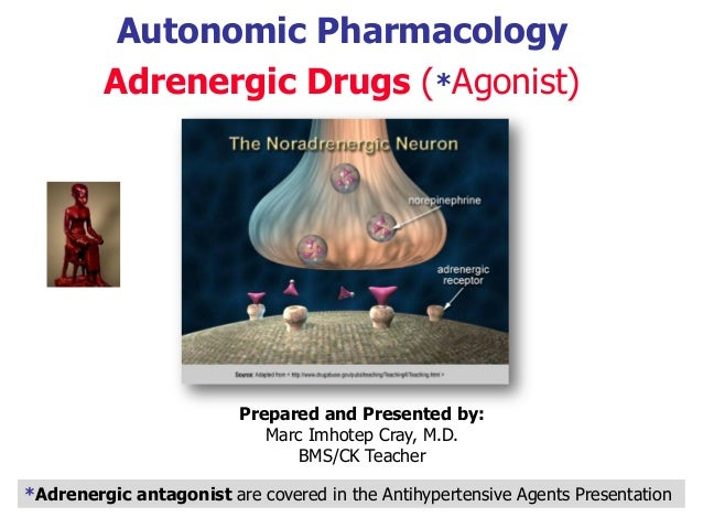 Autonomic Pharmacology Adrenergic Drugs (*Agonist) Prepared and Presented by: Marc Imhotep Cray, M.D. BMS/CK Teacher *Adre...