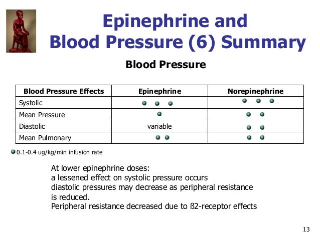 13 Epinephrine and Blood Pressure (6) Summary Blood Pressure Blood Pressure Effects Epinephrine Norepinephrine Systolic Me...