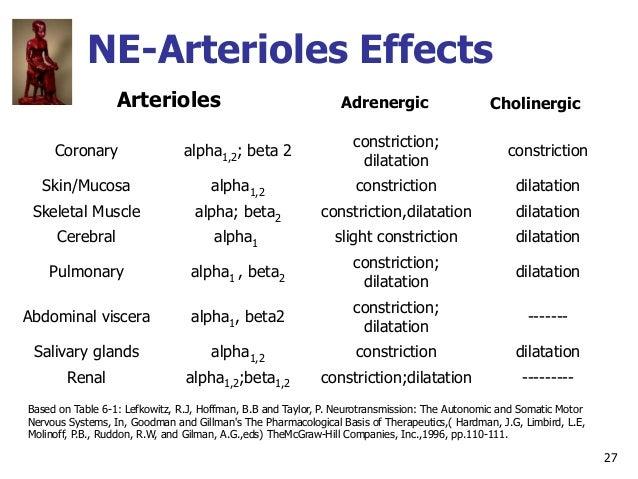 27 NE-Arterioles Effects Arterioles Coronary alpha1,2; beta 2 constriction; dilatation constriction Skin/Mucosa alpha1,2 c...