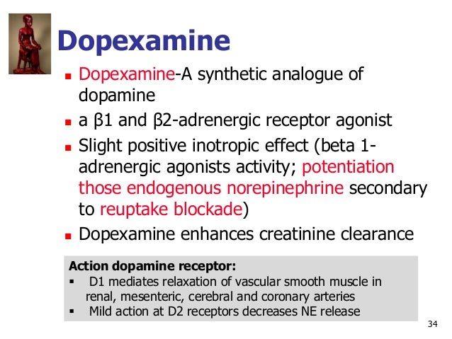34 Dopexamine  Dopexamine-A synthetic analogue of dopamine  a β1 and β2-adrenergic receptor agonist  Slight positive in...