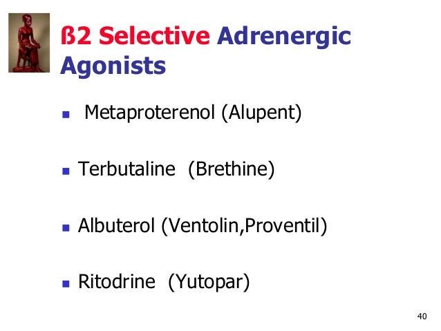 40 ß2 Selective Adrenergic Agonists  Metaproterenol (Alupent)  Terbutaline (Brethine)  Albuterol (Ventolin,Proventil) ...