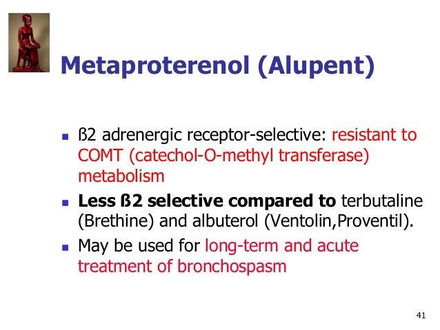41 Metaproterenol (Alupent)  ß2 adrenergic receptor-selective: resistant to COMT (catechol-O-methyl transferase) metaboli...