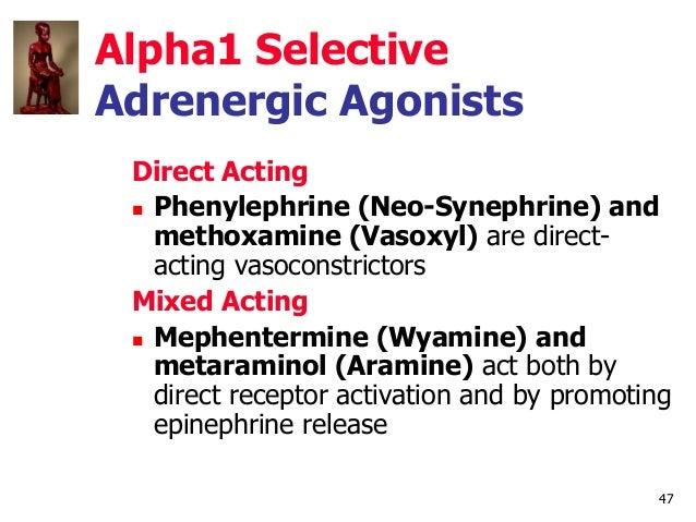 47 Alpha1 Selective Adrenergic Agonists Direct Acting  Phenylephrine (Neo-Synephrine) and methoxamine (Vasoxyl) are direc...