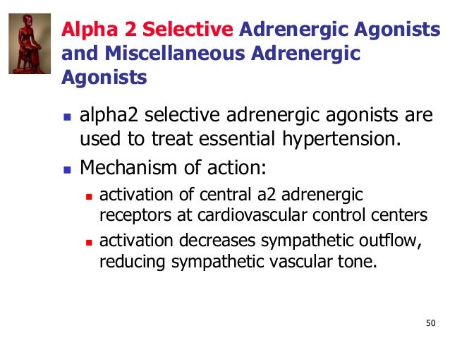 50 Alpha 2 Selective Adrenergic Agonists and Miscellaneous Adrenergic Agonists  alpha2 selective adrenergic agonists are ...