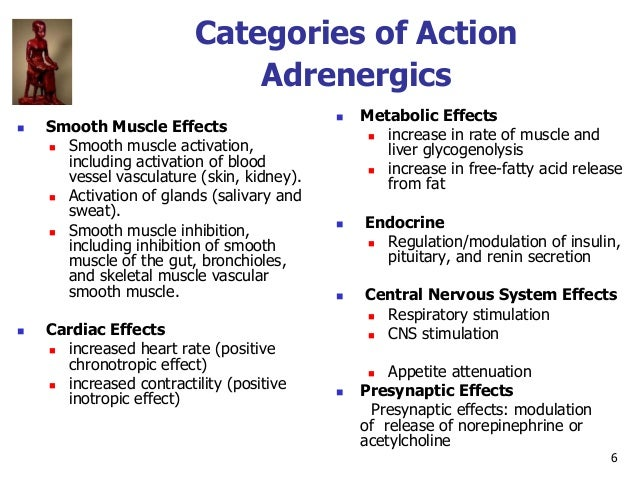 6 Categories of Action Adrenergics  Smooth Muscle Effects  Smooth muscle activation, including activation of blood vesse...