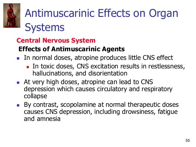 50 Antimuscarinic Effects on Organ Systems Central Nervous System Effects of Antimuscarinic Agents  In normal doses, atro...