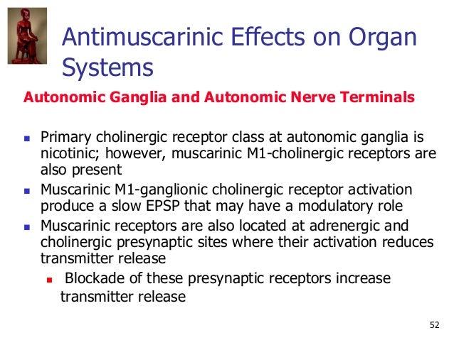 52 Antimuscarinic Effects on Organ Systems Autonomic Ganglia and Autonomic Nerve Terminals  Primary cholinergic receptor ...