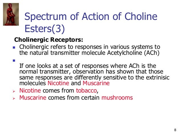 8 Spectrum of Action of Choline Esters(3) Cholinergic Receptors:  Cholinergic refers to responses in various systems to t...