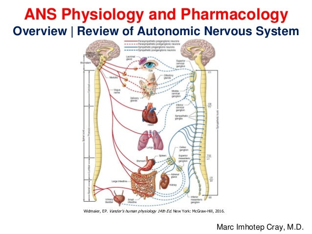 ANS Physiology and Pharmacology Overview | Review of Autonomic Nervous System Marc Imhotep Cray, M.D. Widmaier, EP. Vander...