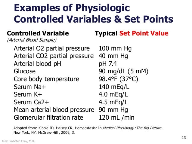 Marc Imhotep Cray, M.D. 13 Controlled Variable Typical Set Point Value (Arterial Blood Sample) Arterial O2 partial pressur...