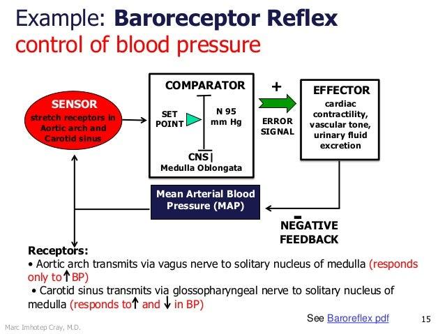 Marc Imhotep Cray, M.D. 15 ERROR SIGNAL COMPARATOR SET POINT + Mean Arterial Blood Pressure (MAP) SENSOR EFFECTOR -NEGATIV...