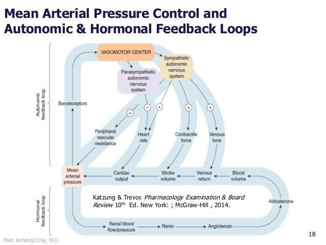 Marc Imhotep Cray, M.D. 18 Mean Arterial Pressure Control and Autonomic & Hormonal Feedback Loops Katzung & Trevor. Pharma...