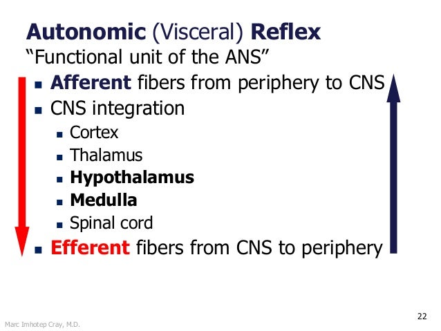 """Marc Imhotep Cray, M.D. 22 Autonomic (Visceral) Reflex """"Functional unit of the ANS""""  Afferent fibers from periphery to CN..."""