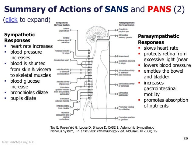 Marc Imhotep Cray, M.D. 39 Summary of Actions of SANS and PANS (2) Toy E, Rosenfeld G, Loose D, Briscoe D. CASE 1, Autonom...