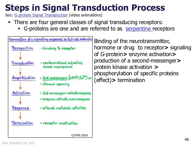 Marc Imhotep Cray, M.D. Steps in Signal Transduction Process See: G-protein Signal Transduction (video animations) 48  Th...