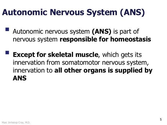 Marc Imhotep Cray, M.D. Autonomic Nervous System (ANS) 5  Autonomic nervous system (ANS) is part of nervous system respon...