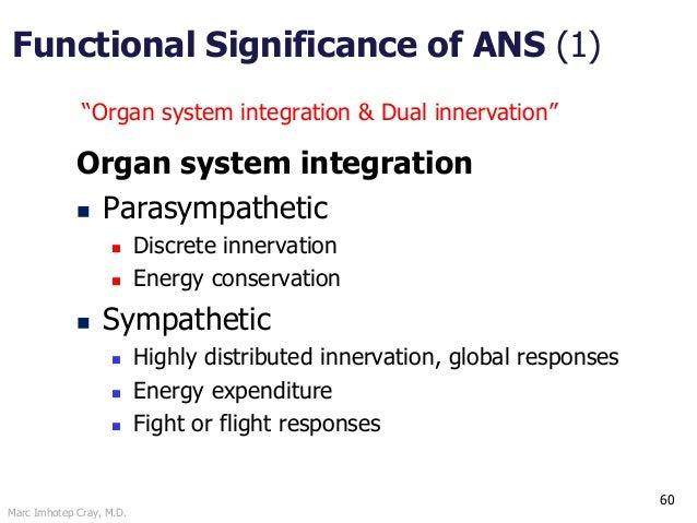 Marc Imhotep Cray, M.D. 60 Organ system integration  Parasympathetic  Discrete innervation  Energy conservation  Sympa...