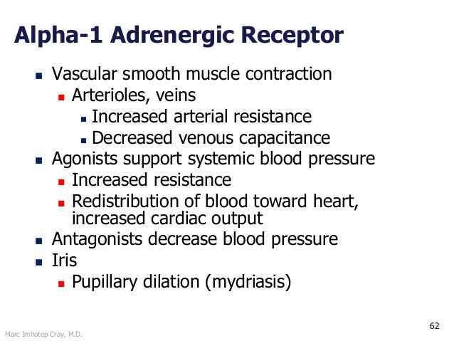 Marc Imhotep Cray, M.D. 62 Alpha-1 Adrenergic Receptor  Vascular smooth muscle contraction  Arterioles, veins  Increase...