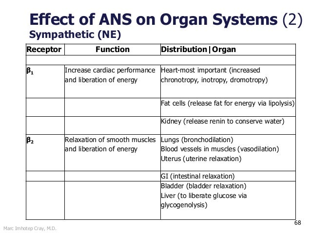 Marc Imhotep Cray, M.D. 68 Effect of ANS on Organ Systems (2) Sympathetic (NE) Receptor Function Distribution Organ β1 Inc...