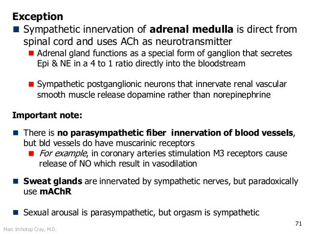 Marc Imhotep Cray, M.D. 71 Exception Sympathetic innervation of adrenal medulla is direct from spinal cord and uses ACh as...
