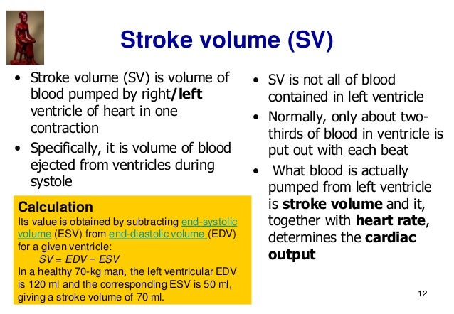 12 Stroke volume (SV) • Stroke volume (SV) is volume of blood pumped by right/left ventricle of heart in one contraction •...
