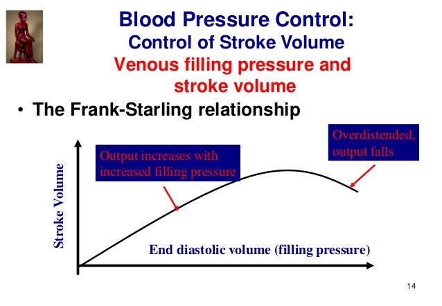 14 Venous filling pressure and stroke volume • The Frank-Starling relationship StrokeVolume End diastolic volume (filling ...